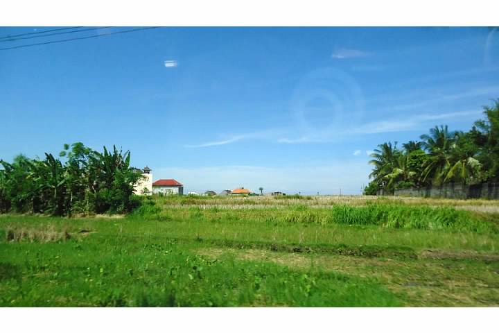 Farm Land outside of Ubud