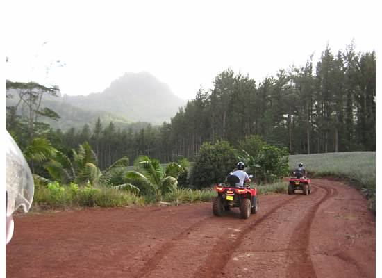 Off roading on the ATV tour