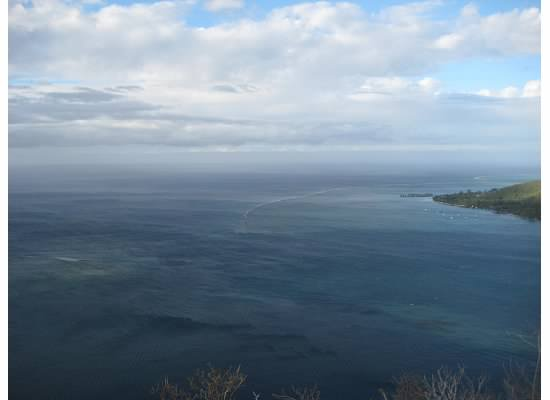 The blue water surrounds Moorea