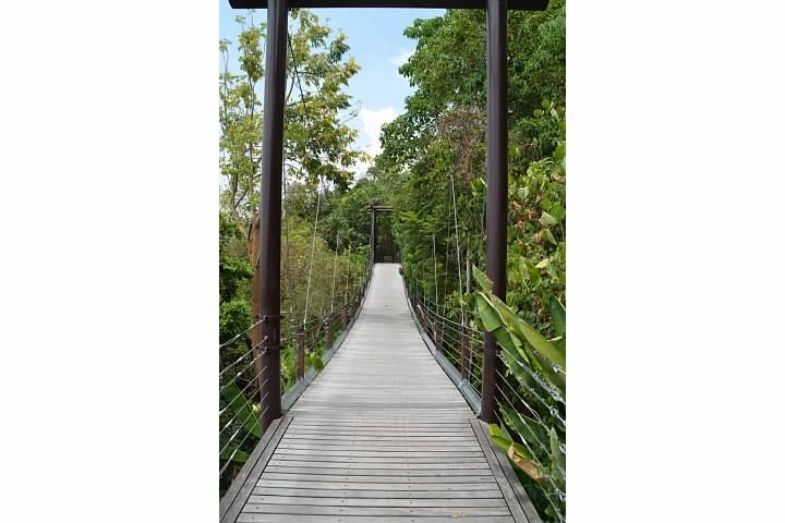 One of the draw bridges located in lush vegetation